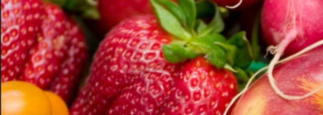 Improving Food Safety